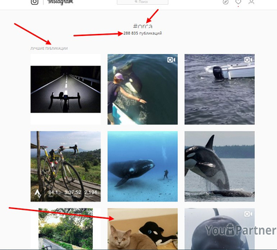 Лучшие публикации Instagram